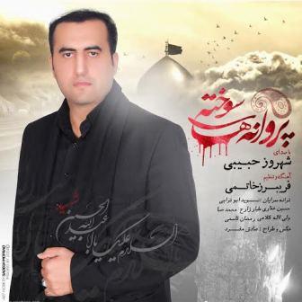 آلبوم آذری جدید شهروز حبیبی به نام پروانه های سوخته