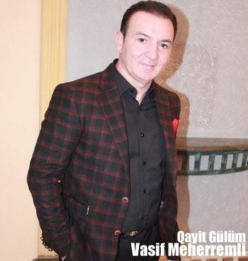 آهنگ جدید Vasif Meherremli بنام Qayit Gulum